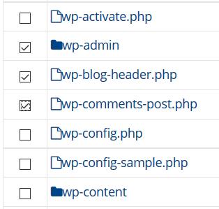 Exempel på hur man markerar filer som ska återställas.