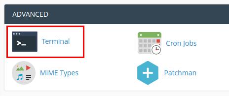cPanel > Terminal (Advanced)